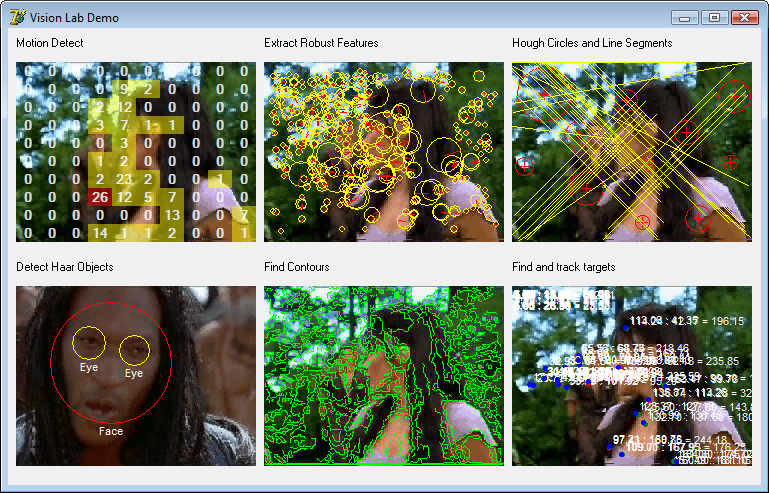 .NET 2.0-4.5 Advanced Computer Vision Library. Motion and Image recognition. latest Screen Shot